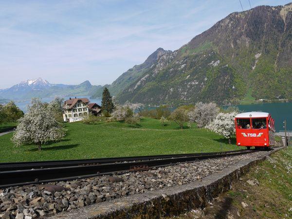 Via Urschweiz, 4. Etappe