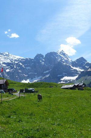 Alp Trogen