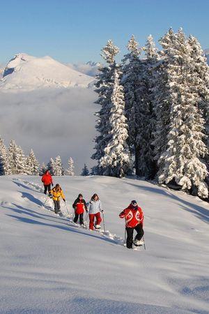 Schneeschuhlaufen Niederbauen