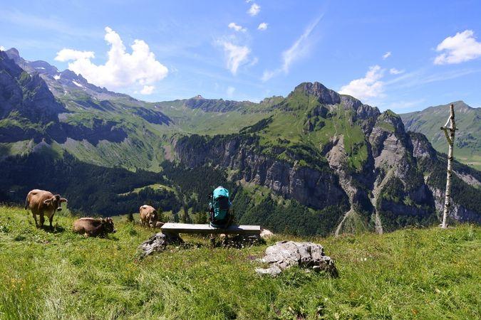 Alpenkranz 3. Etappe: Biwaldalp- Sassigrat - Musenalp