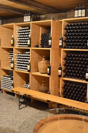 Urner Weinkultur erleben