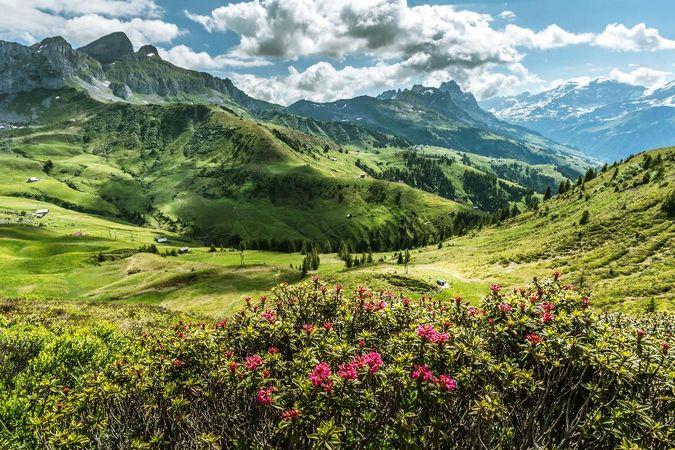 Höhenweg Schächental - Schweiz Mobil Route 595