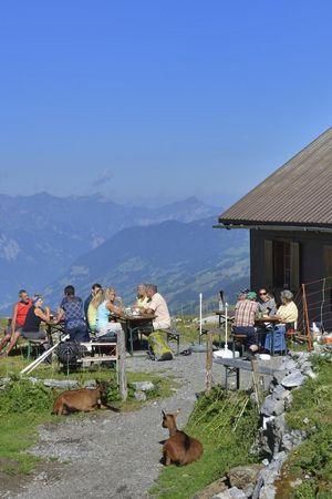 Chammli Alp