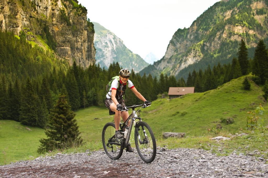 Isenthal Bike - 403 SchweizMobil