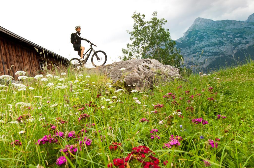 Erstfeldertal Bike - 405 SchweizMobil