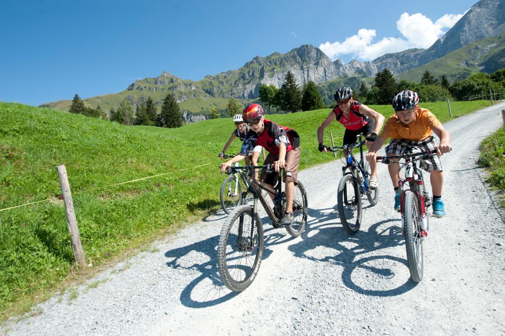 Haldi Bike - 413 SchweizMobil